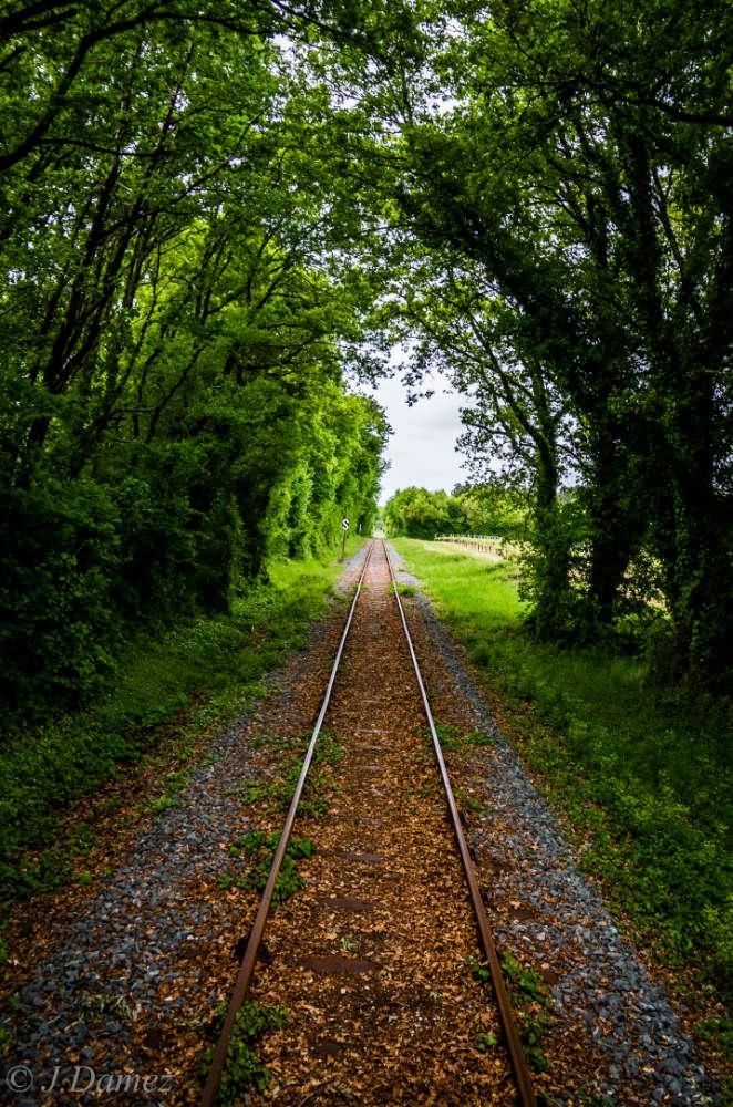 https://www.traindesmouettes.fr/wp-content/uploads/2020/03/train-des-mouettes-2.jpg